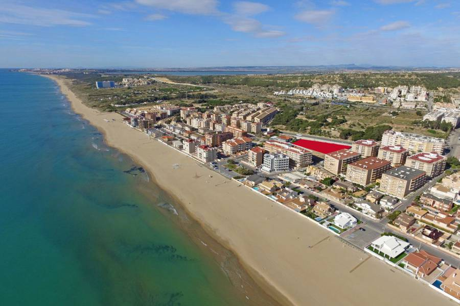 Nouvelle construction - Appartement - Guardamar del Segura